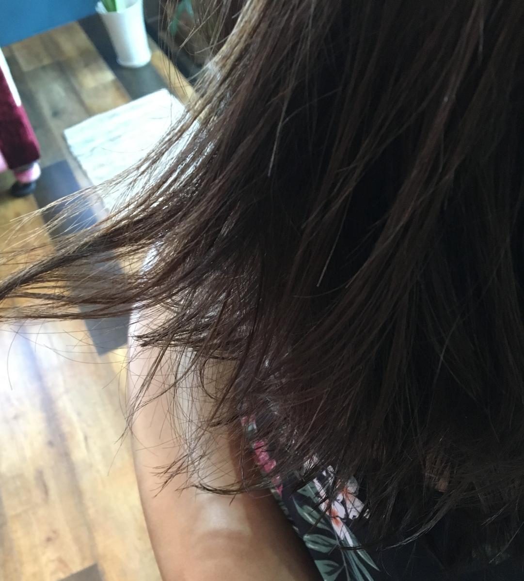 《アディクシー記事》グレーパールで染めてみたら美髪になっちゃった話。